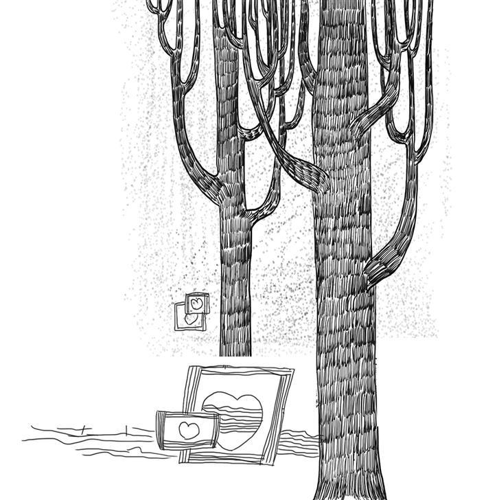 发国风景图片大树下